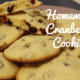 cranberry cookies christmas cookies