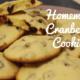 cranberry cookies christmas cookies